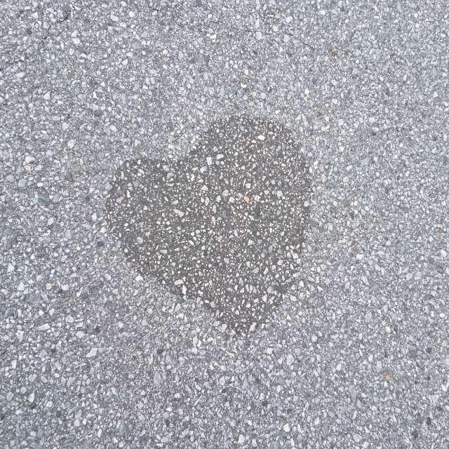 アスファルトの恋