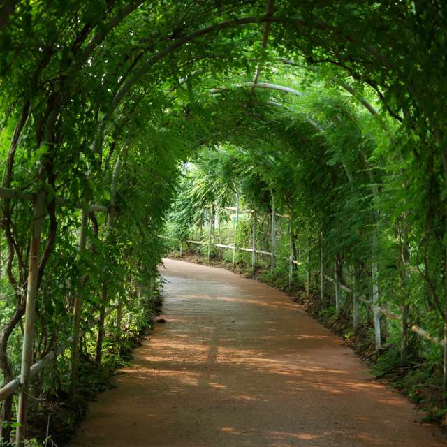 경안천생태습지공원