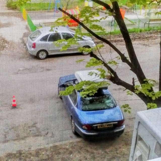 Mutkurova St. Spring at last.