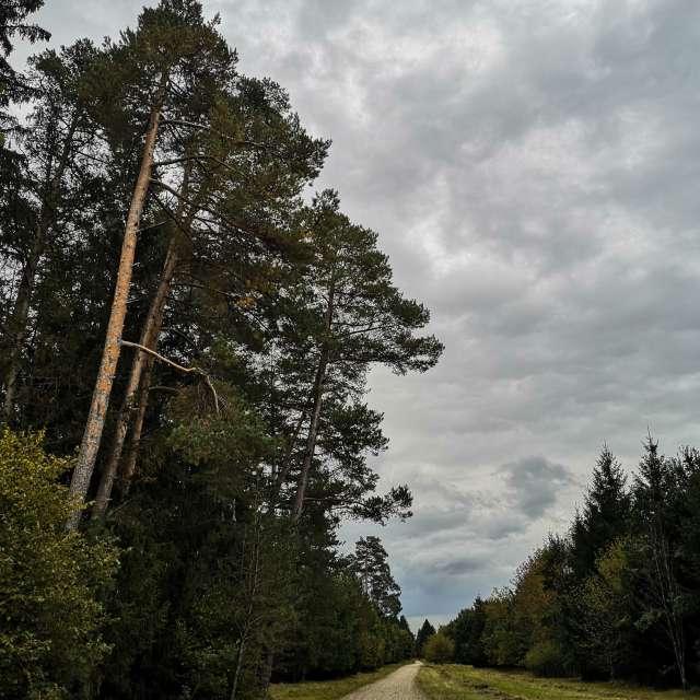 litoの美しい写真による天気予報