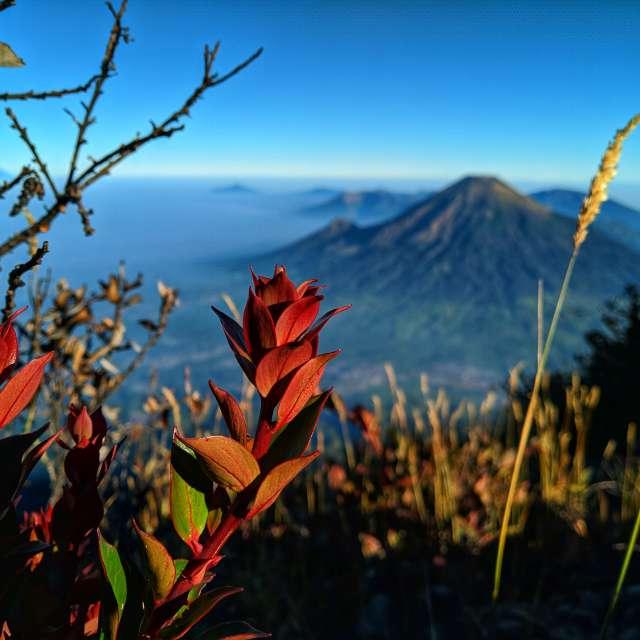 Mt.Sumbing