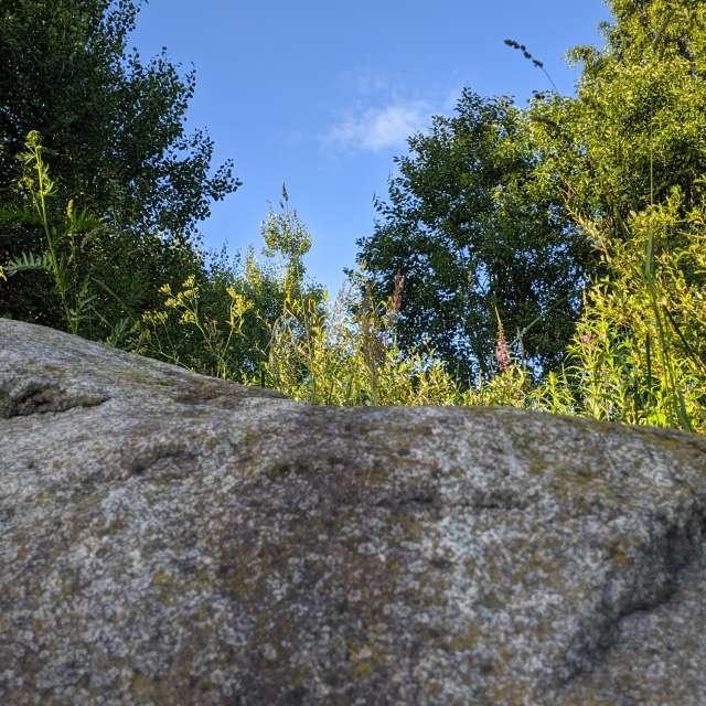 Камень у лесной дороги