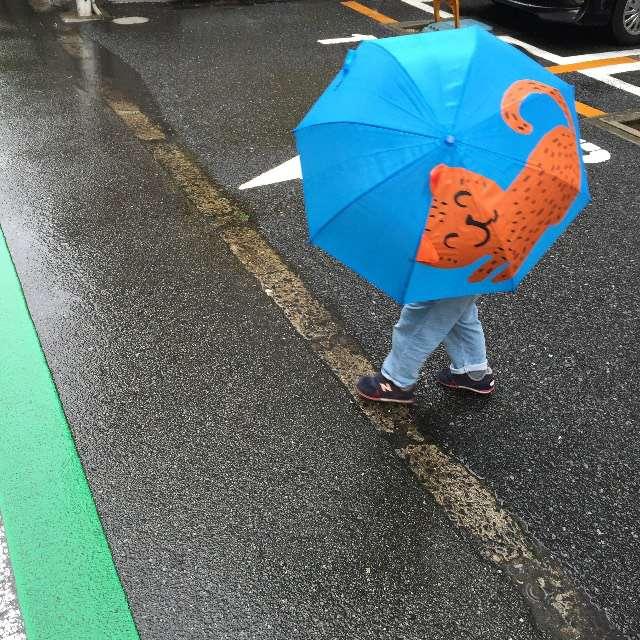 雨がうれしい