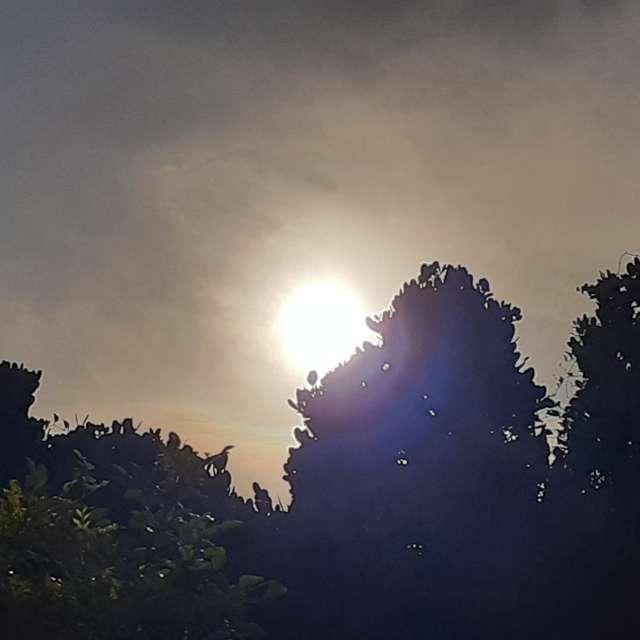 夏至 日食