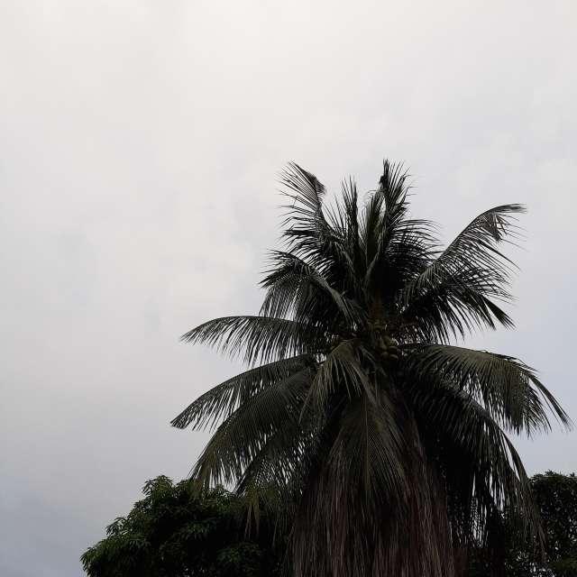 Tempo chuvoso.