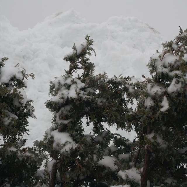 Snow arriving