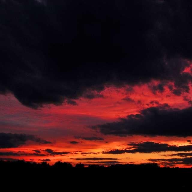 Morton Sunset 1