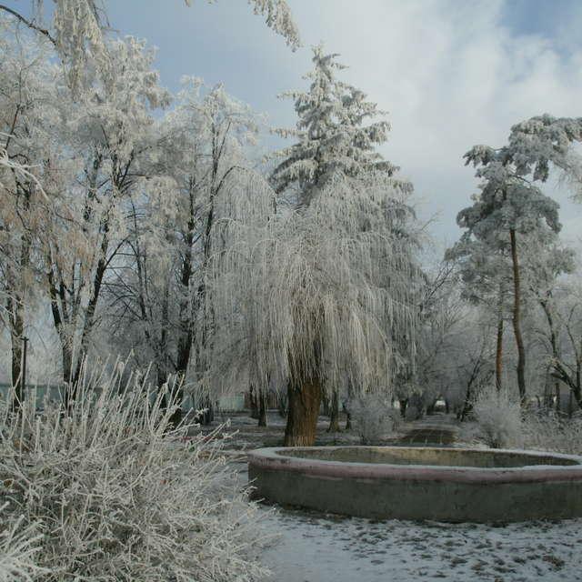 Перші дні зими.