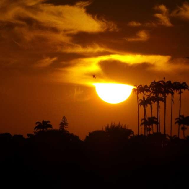 Sol de Fevereiro