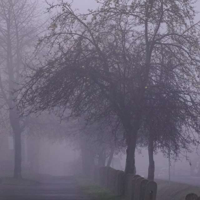 Street haze