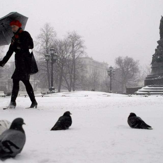 非常 冷的 雪