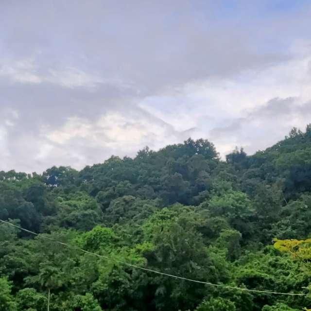 雲巒層疊分明與綠色園區互對照起伏