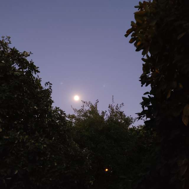 Mother moon & nature