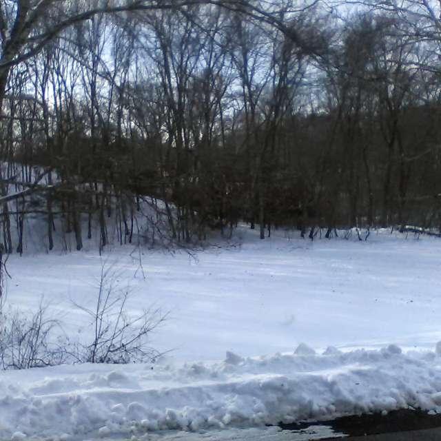 After a snowfall
