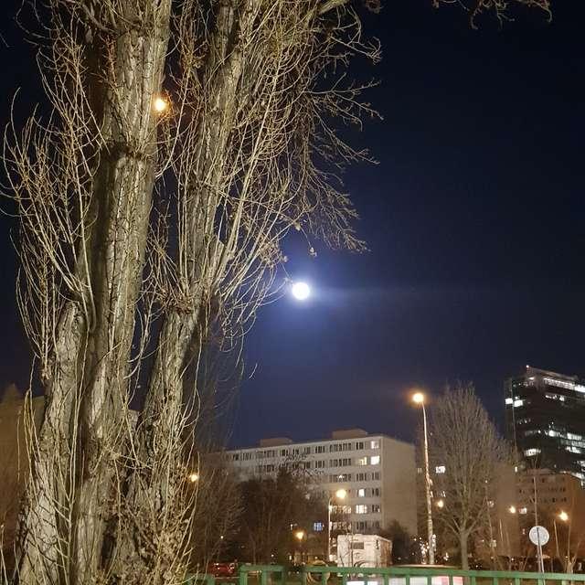 Night, Prague, Three, Moon,