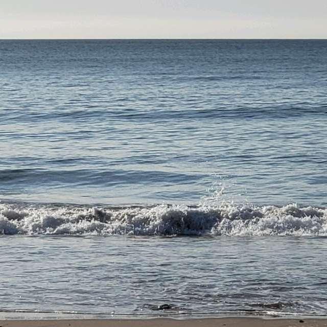 Miramar paz y playa - 2019
