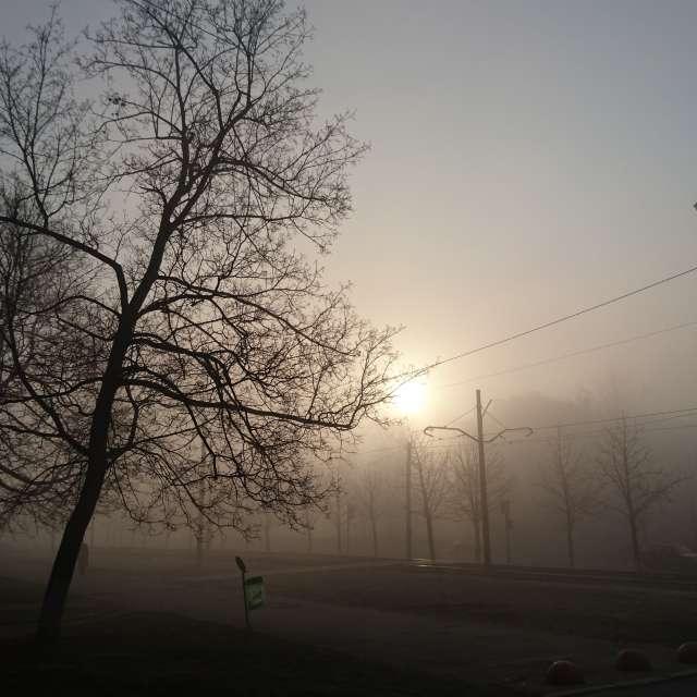 +2*С, туман, 7 утра.