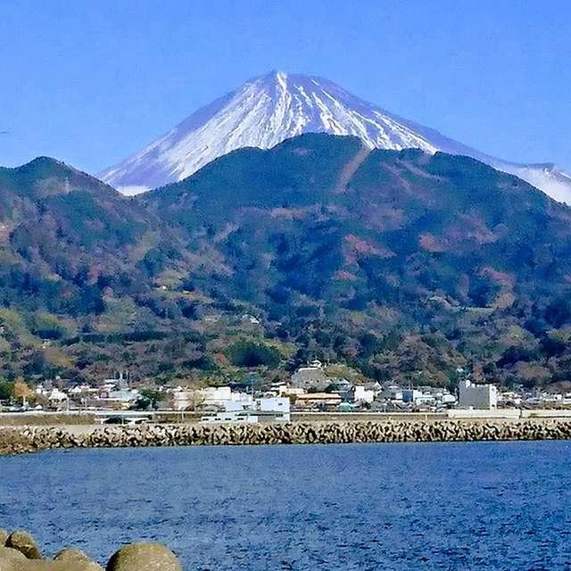 由比港からの富士