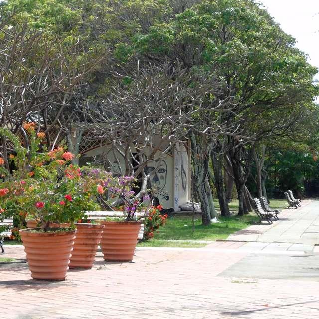 Praça ensolarada e arborizada.