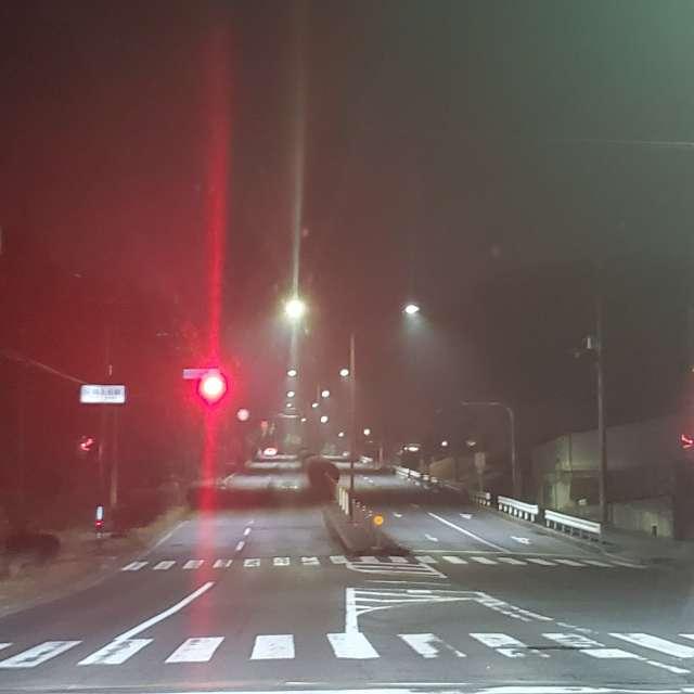 春が来そうな霧信号