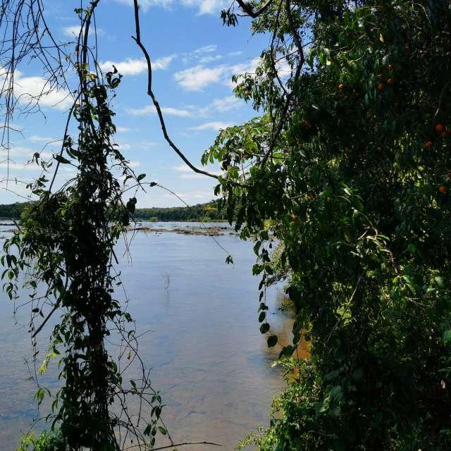 Iguazu River-Falls Argentina