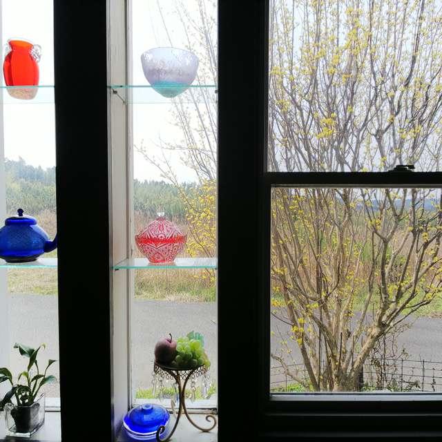 室内風景   早春の色
