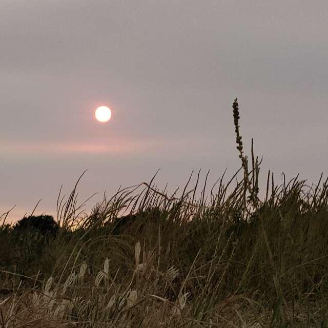 #glendale#AZ #sunset