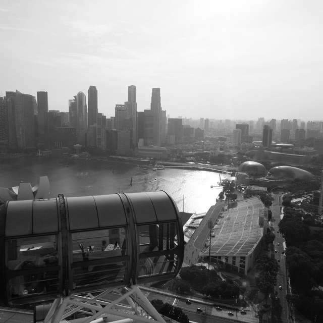 Singapore Flyer in B&W