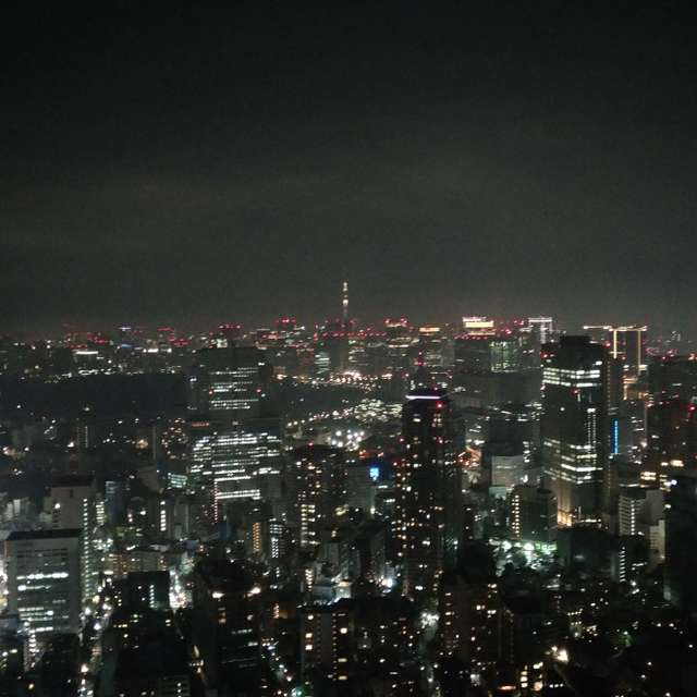 City Lights/Tokyo