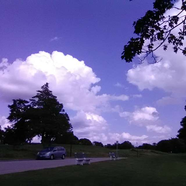 """Cloud Animals"""