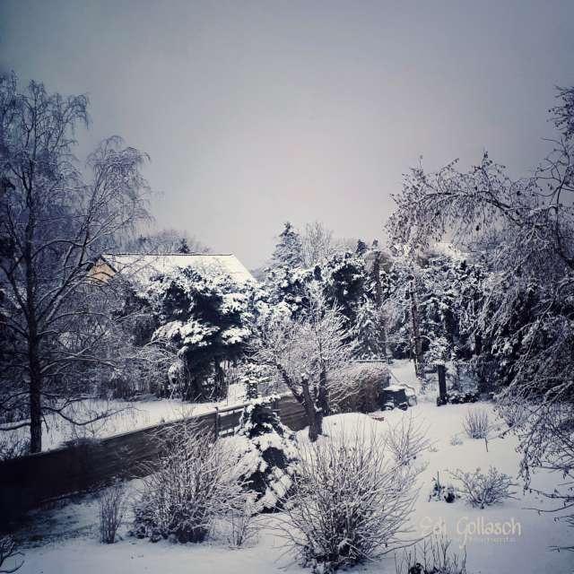 Erster Schnee 2021
