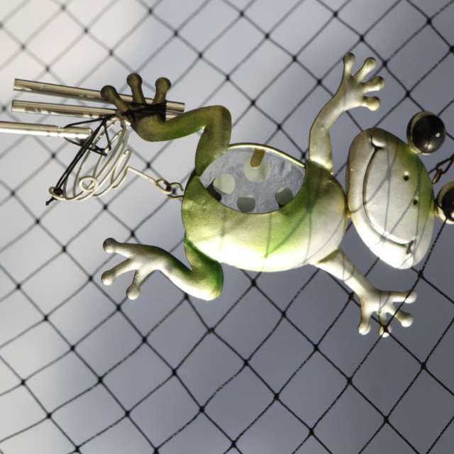 Frog in cat net