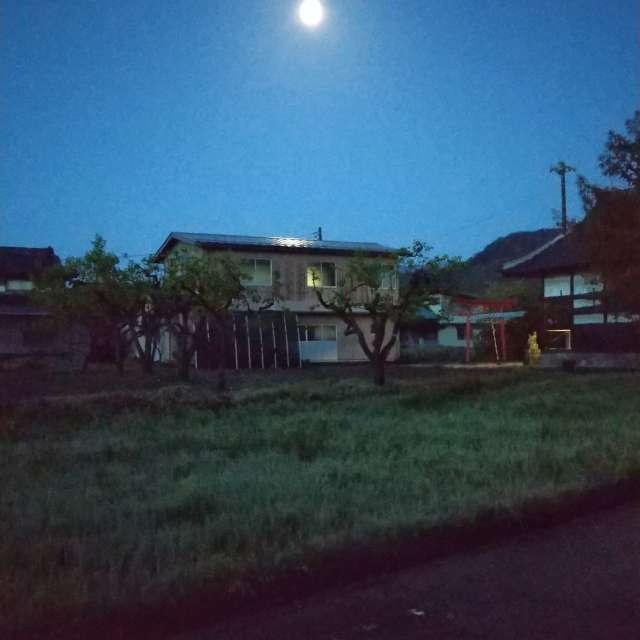水たまりに映る月
