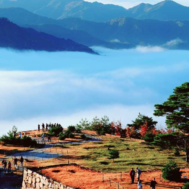 竹田城跡からの雲海