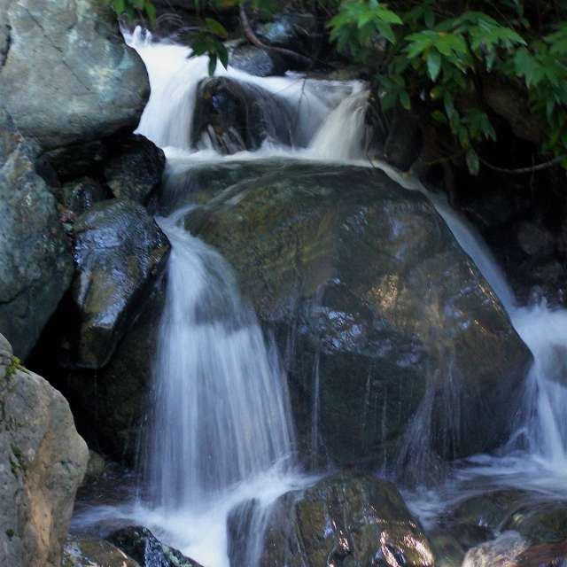 Free Flowing Stream