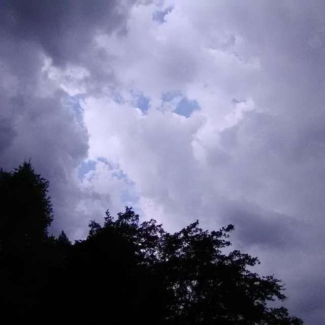 Blue Peeking Thru