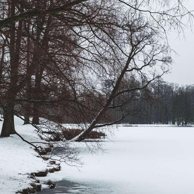 Winter Russian Vibe