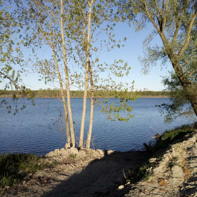 ...sulle rive del fiume Po...