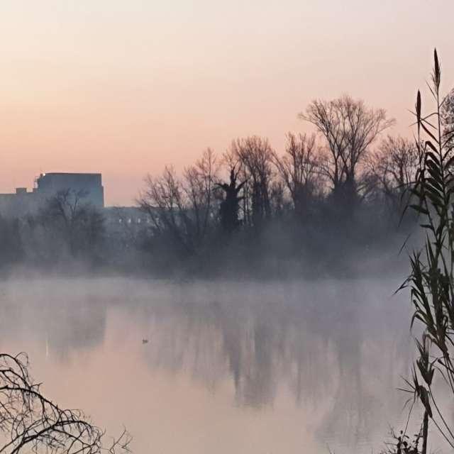 Frosty morning 🥶🥶🥶  sunrise