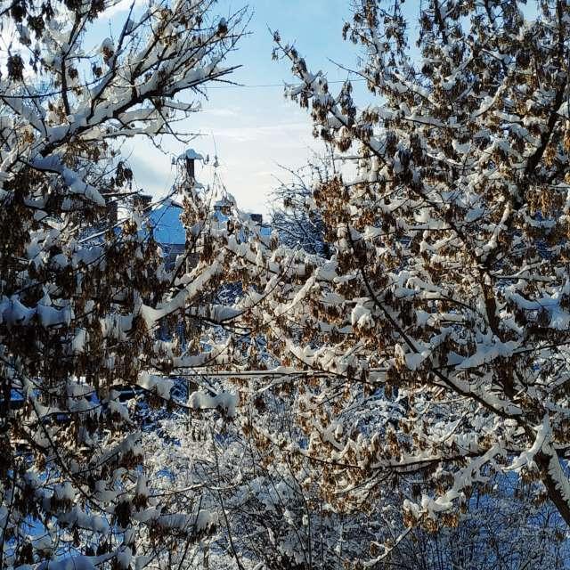 Dự báo thời tiết với những bức ảnh đẹp của Olena-13