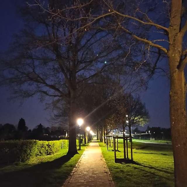 A late evening walk.