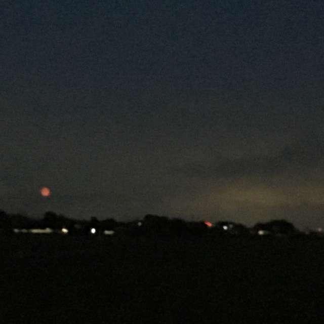 赤い月が登りました。