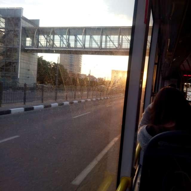 Вид из троллейбуса
