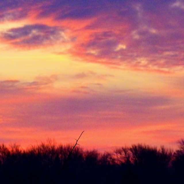 Colorful Winter Sunrise
