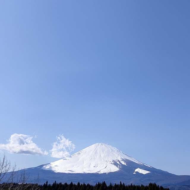 Mt.Fuji/Shizuoka