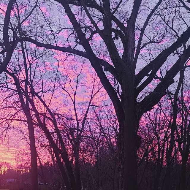 Se iowa cotton candy sunrise
