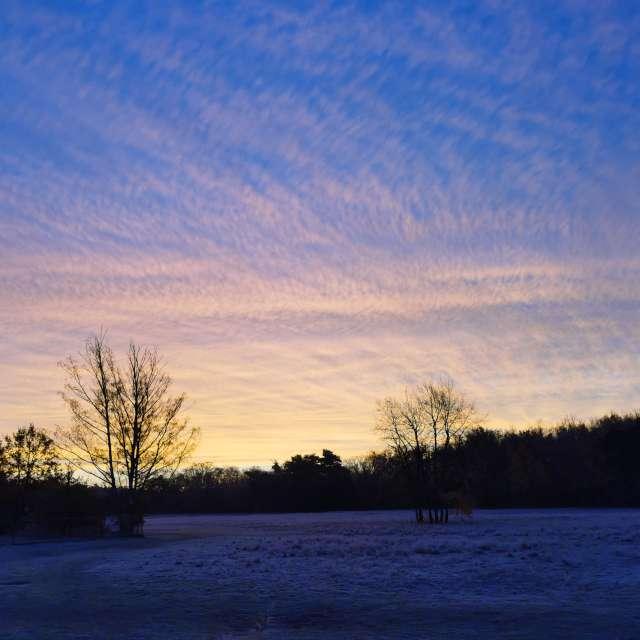 November sunrise