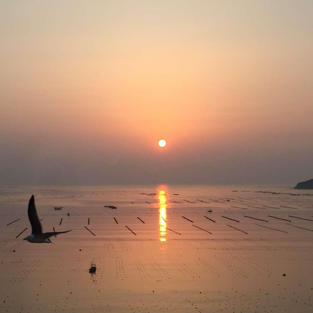 Very Pleasant Sunrise