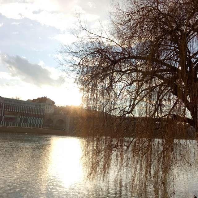 Sun shine and reflection