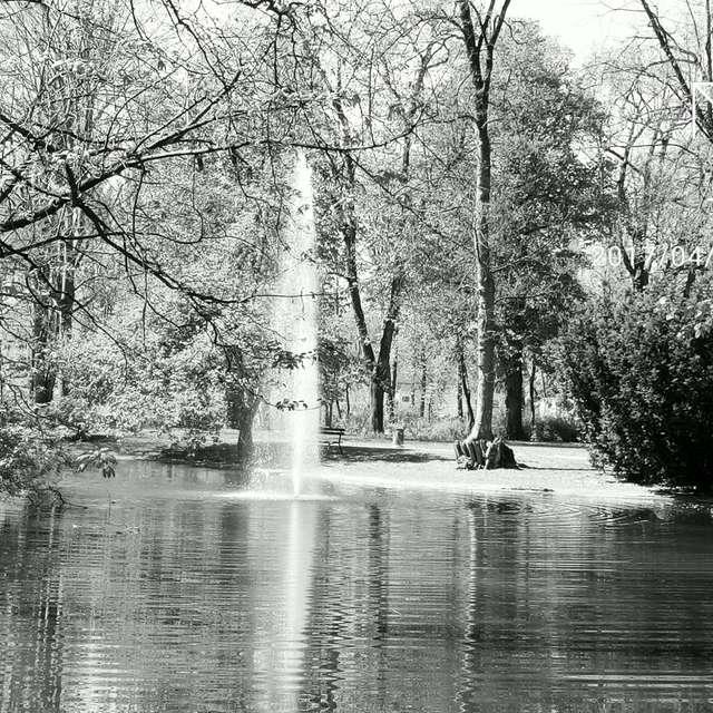 Fountain in B&W